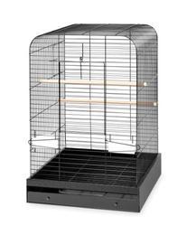 Madison Bird Cage Color: Black Hammertone