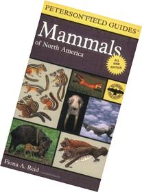 Peterson Field Guide to Mammals of North America : Fourth