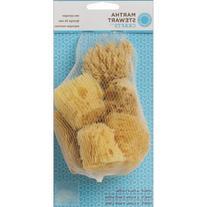 Martha Stewart Crafts Sea Sponge, 32228