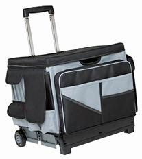 ECR4Kids MemoryStor Universal Rolling Cart and Organizer Bag