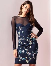 Lipsy Mesh Embroidered Bodycon Dress