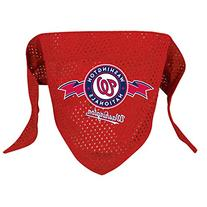 Hunter MFG Washington Nationals Mesh Dog Bandana, Large