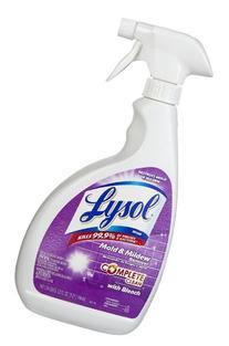 Lysol Mold & Mildew Blaster, Bleach & Shine, 32 oz, Case of