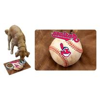 MLB Cleveland Indians Baseball Pet Mat