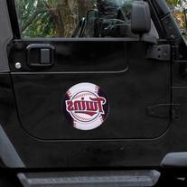 MLB Minnesota Twins 8'' Team Logo Car Magnet