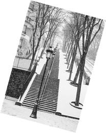 16x24 in. Rebecca Plotnick Montmartre Stairs in the Snow