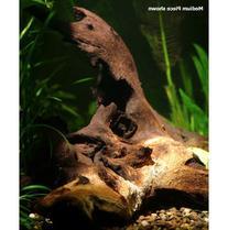 Zoo Med Mopani Wood Aquarium Tag 6-8in