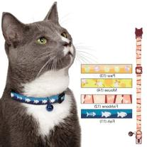 Savvy Tabby Mousin' Around Cat Collar, 3/8-Inch, Paw