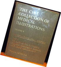 The Netter Collection of Medical Illustrations -
