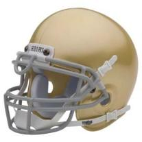 Schutt NCAA Notre Dame Fighting Irish Mini Authentic XP