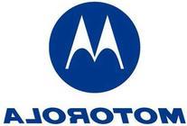 Motorola NX6500 TIERED AP LICENSE  - NX-6500-AP-48