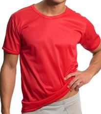 Players 1 Pack Nylon Tricot Crew Neck Tee PLNTS1-L-SILVER