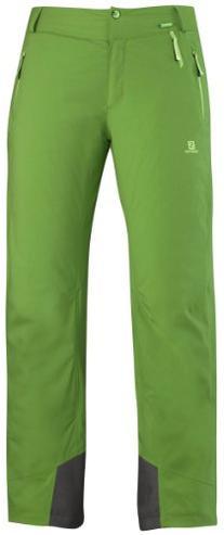 Salomon Womens Odysee Gtx Pant, Size Medium, Amphib Green