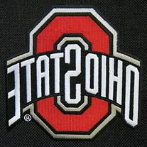 Ohio State University Laptop Bag OSU Buckeyes Computer Bag