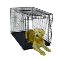 MidWest Homes for Pets Ovation Single Door Crate with Up and