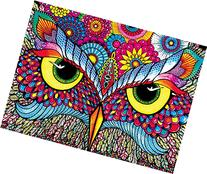 Buffalo Games Owl Eyes Jigsaw Puzzle from the Vivid