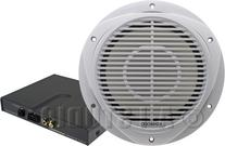 Kenwood P-WD250MRW 10-Inch Marine Subwoofer and Amplifier