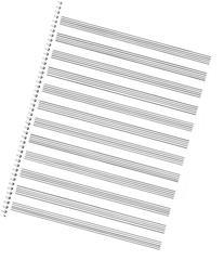 85. Spiral Book 12-Stave: Passantino Manuscript Paper