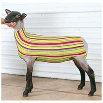 Patterned Spandex Lamb Tube Small  Assorted miscellaneous