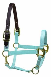 Perris Premium Nylon Safety Halter - Color: Sky Blue Size: