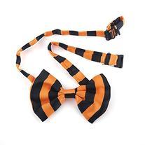 GOGO Pet Bow Tie Collar, Pet Supplies, 10 PCS Assorted