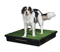 PetSafe Pet Loo Potty Training System - Large