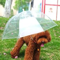 """Lesypet Pet Umbrella Dog Umbrellar With Leash, Fits 23"""" Back"""