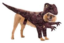Animal Planet PET20109 Raptor Dog Costume, Size Medium