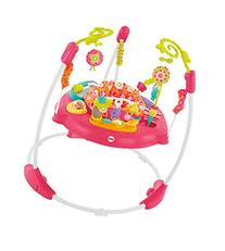 Fisher-Price Pink Petals Jumperoo