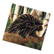 Plush Porcupine Hand Puppet 7
