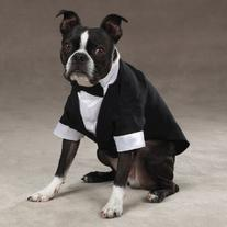 "East Side Collection ""Yappily Ever After"" Groom's Tuxedo for"
