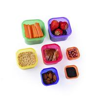 Efficient Nutrition Portion Control Containers Kit  +