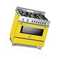 "Bertazzoni PRO366DFSGI Pro 36"" Dual Fuel Self Clean Range in"