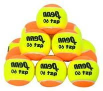 PENN QST 60 Felt Tennis Balls in Polybag