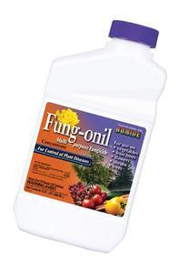 Bonide Qt Fungonil/daconil Fungicide