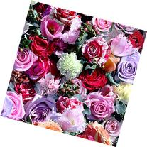 Rose Floral Wallpaper - Red and Pink - Muriva J97010