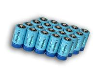 Saving Combo: 20 pcs of Tenergy D Size 10,000mAh High