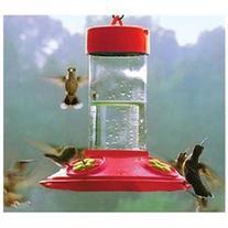 Songbird Essentials SE6018 Dr. JBs 16 oz Clean Feeder - All