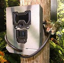 Security box for Bushnell Trophy Cam HD Aggressor Models