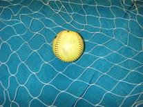 10 X 25 Soccer, Basketball, Softball, Sports, Fishing Net,