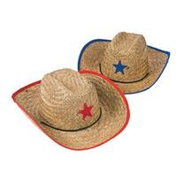 Fun Express Childs Straw Cowboy Hat with Plastic Star - 12
