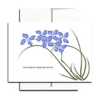 Sympathy Note Cards: Violets - box of 30 blank cards & 32