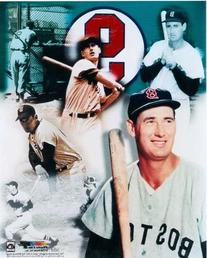 Ted Williams unsigned 8x10 photo Boston Red Sox collage