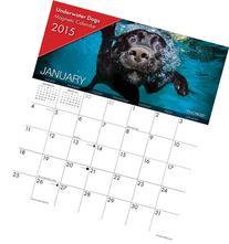 Underwater Dogs 2015 Magnetic Calendar
