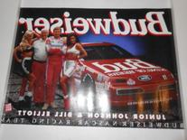 Vintage Bill Elliott Ford Budweiser Thunderbird#11 & Junior