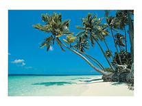 1 X Tropical Beach Backdrop Banner Luau Photo Booth Decorati