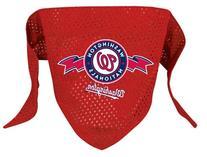 Washington Nationals Mesh Dog Bandana