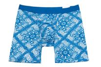 MyPakage Weekday Boxer Brief Blue Paisley-Blue Size Small