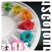 350buy Wheel Dried Dry Flower Nail Art Decorations UV